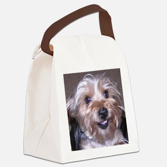 Maddies_Smile Canvas Lunch Bag