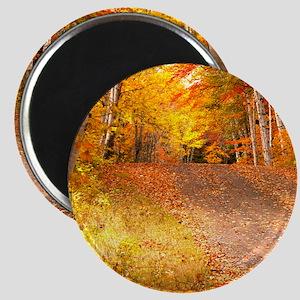 AutumnFoliageRural_9X12 Magnet