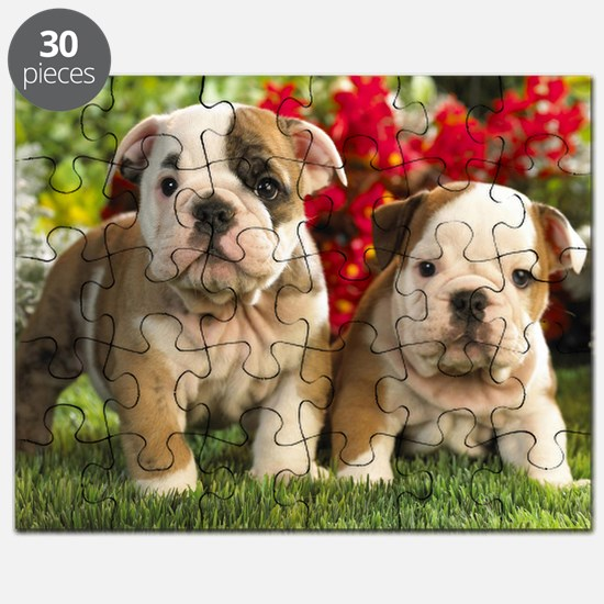 cute_bulldog_puppies_wide_wallpaper Puzzle