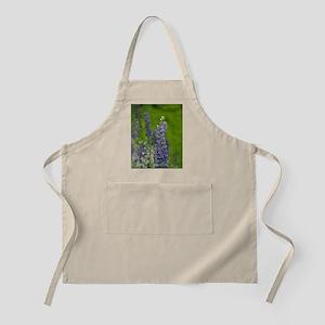 Ingonish. Lupine wildflowerseton Island, Cab Apron