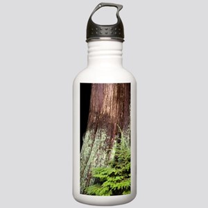and western red cedar Stainless Water Bottle 1.0L