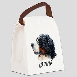 GS_temp_field_bag Canvas Lunch Bag