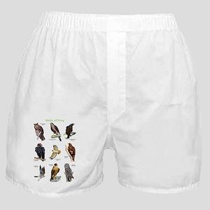 Birds of Prey Boxer Shorts