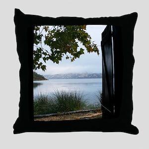 IMG_2196 5.5x4.25 use 7-23 Throw Pillow