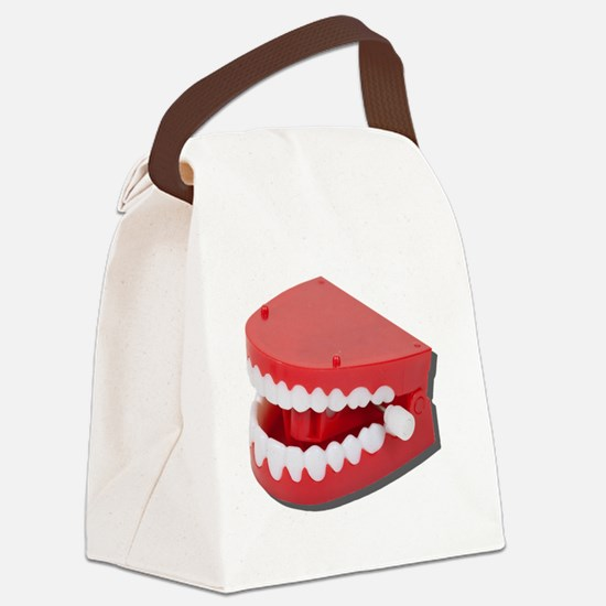 FakeChatteringTeeth081311 Canvas Lunch Bag