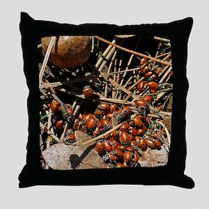 IMG_0723 18x24 Throw Pillow