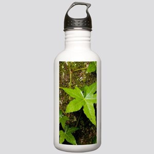 with English ivy Stainless Water Bottle 1.0L