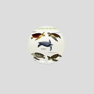 Sea Turtles of the World Mini Button