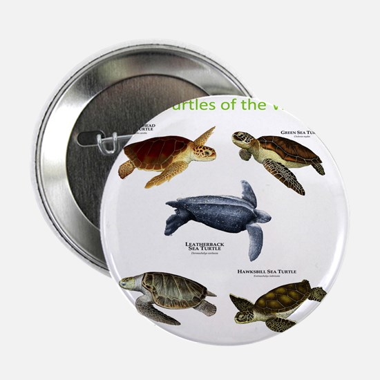 """Sea Turtles of the World 2.25"""" Button"""