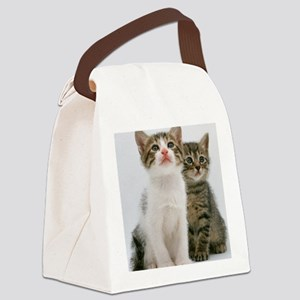 pair of kittens Lt Canvas Lunch Bag