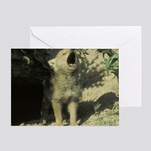 wolf pup mp Greeting Card