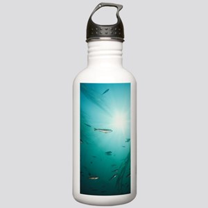 Juvenile Copper Rockfi Stainless Water Bottle 1.0L