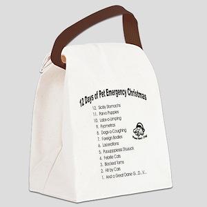Pet Emergency Christmas Design Canvas Lunch Bag
