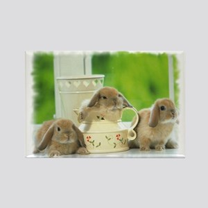 Happy Easter Trio of Bunnies Rectangle Magnet