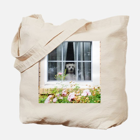 Zak in the windowA Tote Bag