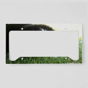 Mia_16x License Plate Holder