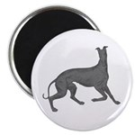 Greyhound Frolic Magnets