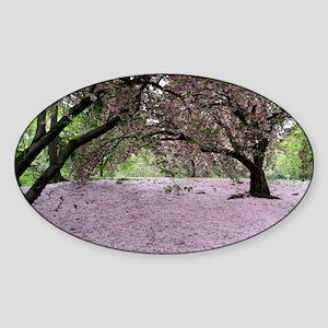FallenCherryBlossomsMP Sticker (Oval)