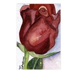 Valentine Roses Postcards (Package of 8)