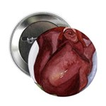Valentine Roses Button