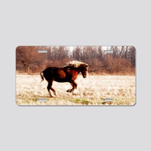 freedommod14cal Aluminum License Plate