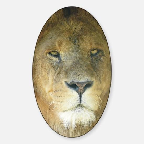 Lion journal Sticker (Oval)