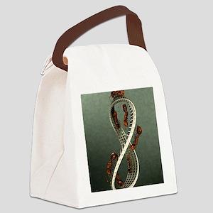 EscherLargeResized Canvas Lunch Bag