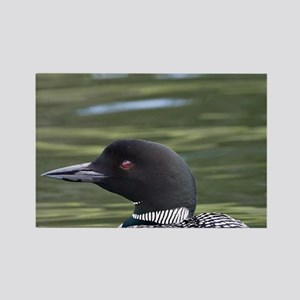 Lac Le Jeune. Common Loon (Gavia  Rectangle Magnet