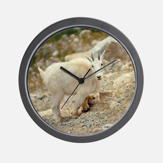 The goat antelope is more commonly know Wall Clock