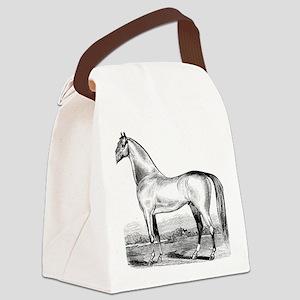 Horse Illustration1 Canvas Lunch Bag