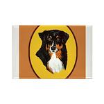 Australian Shepherd design Rectangle Magnet (100 p