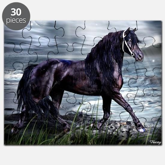 Fresian Puzzle