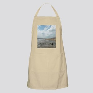 Solitary Seagull Apron