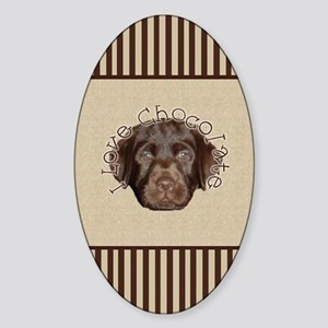 nook_lab_chocolate Sticker (Oval)