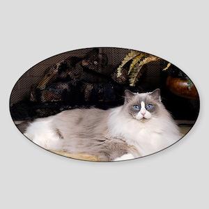 H Sammy fireplace Sticker (Oval)