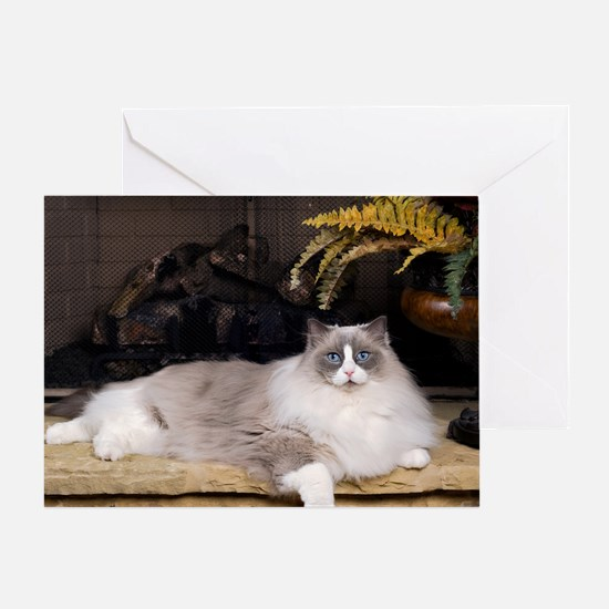 H Sammy fireplace Greeting Card