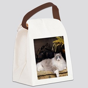 H Sammy fireplace Canvas Lunch Bag
