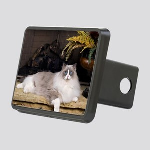 H Sammy fireplace Rectangular Hitch Cover