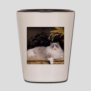 H Sammy fireplace Shot Glass