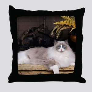H Sammy fireplace Throw Pillow