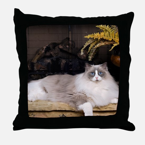 H Sammy fireplace Throw Pillow