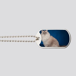 H Cover Dog Tags