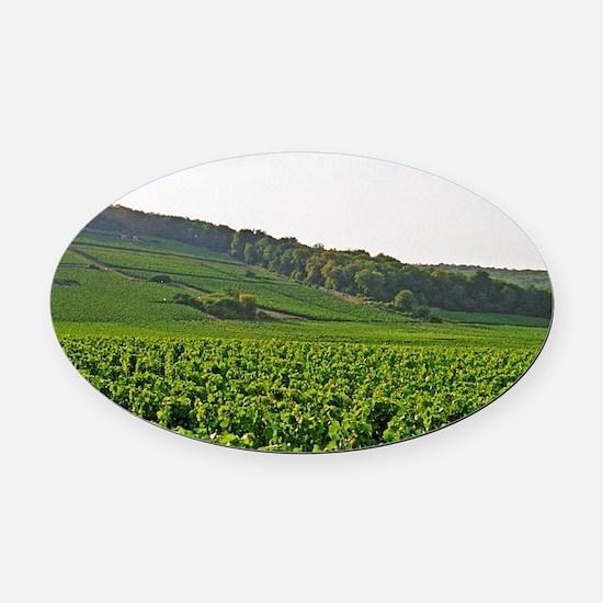 Sign in the vineyard, Gevrey Chamb Oval Car Magnet