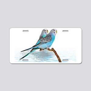 2 blue parakeets Aluminum License Plate