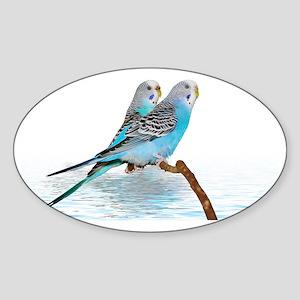2 blue parakeets Sticker (Oval)