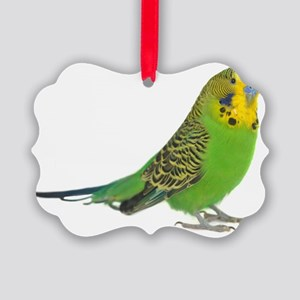 green parakeet Picture Ornament