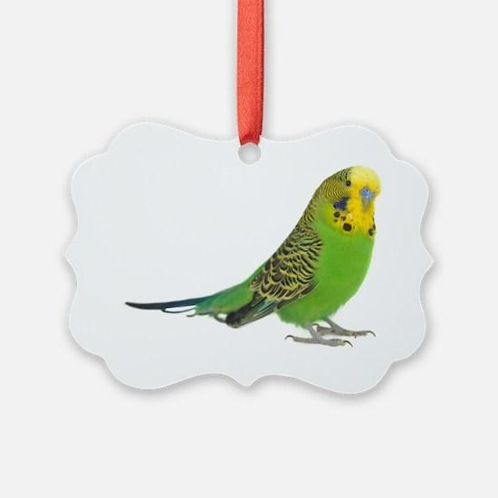 green parakeet Ornament