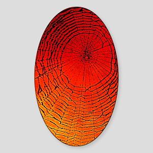 Spider Web Art Sticker (Oval)