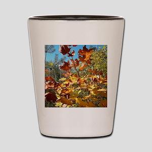 Autumn Glow Shot Glass