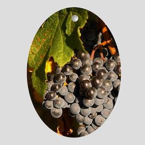 Ripe Merlot grape bunches on the vin Oval Ornament